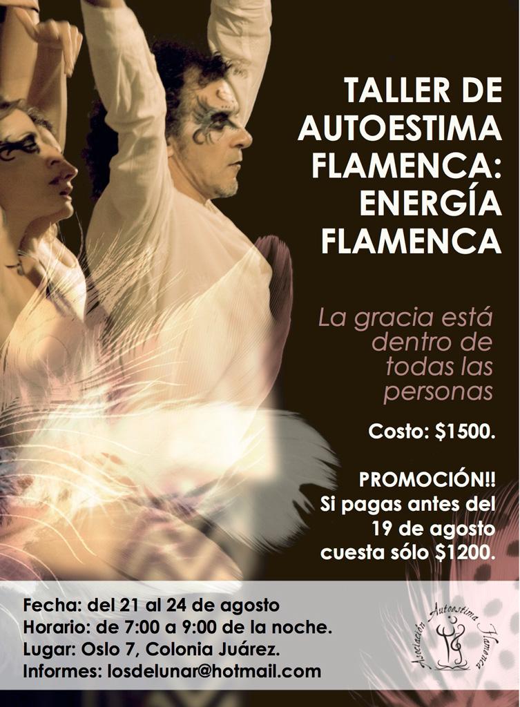 Taller Energía Flamenca. Colonia Juarez 2017